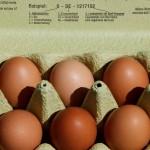 Rogue One 7: ¿Qué les pasa a los huevos holandeses?